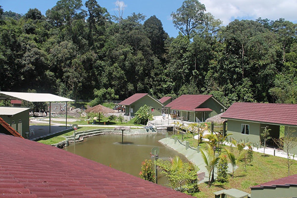 Green Village Resort